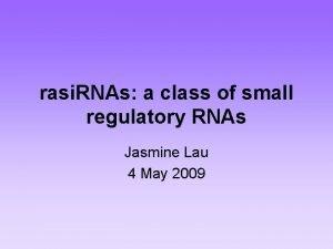 rasi RNAs a class of small regulatory RNAs