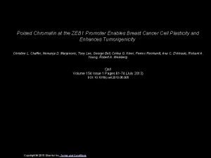 Poised Chromatin at the ZEB 1 Promoter Enables