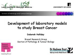 Section of Pathology and Tumour Biology Development of