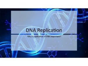 DNA Replication Why is replication of DNA important