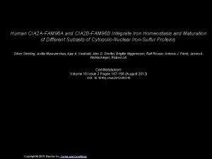 Human CIA 2 AFAM 96 A and CIA
