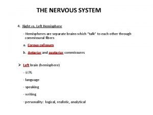 THE NERVOUS SYSTEM 4 Right vs Left Hemisphere