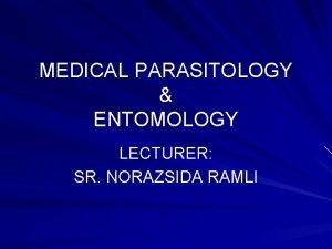 MEDICAL PARASITOLOGY ENTOMOLOGY LECTURER SR NORAZSIDA RAMLI Intestinal