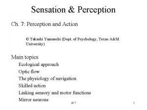 Sensation Perception Ch 7 Perception and Action Takashi