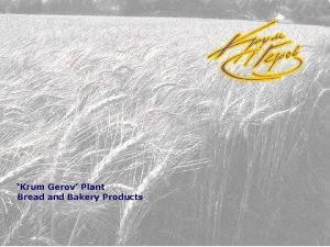 Krum Gerov Plant Bread and Bakery Products About