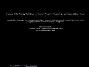 Primary Cilia Are Dysfunctional in Obese AdiposeDerived Mesenchymal