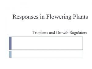 Responses in Flowering Plants Tropisms and Growth Regulators