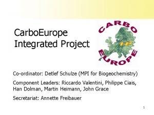Carbo Europe Integrated Project Coordinator Detlef Schulze MPI