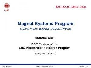 BNL FNAL LBNL SLAC Magnet Systems Program Status