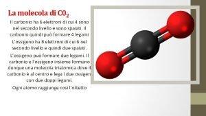 La molecola di C 02 Il carbonio ha