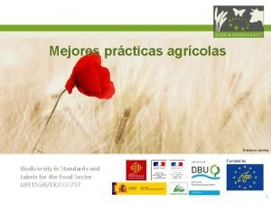 Mejores prcticas agrcolas pictures pixabay Funded by Biodiversity