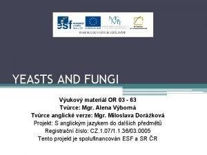 YEASTS AND FUNGI Vukov materil OR 03 63