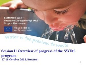 Session I Overview of progress of the SWIM