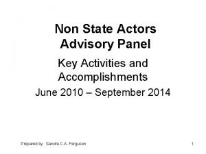 Non State Actors Advisory Panel Key Activities and