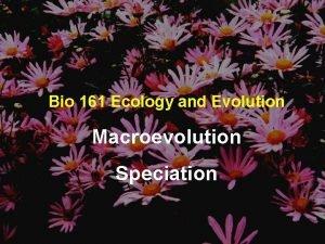Bio 161 Ecology and Evolution Macroevolution Speciation Species