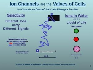Ion Channels are the Valves of Cells Ion