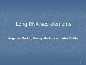 Long RNAseq elements Angelika Merkel Georgi Marinov and