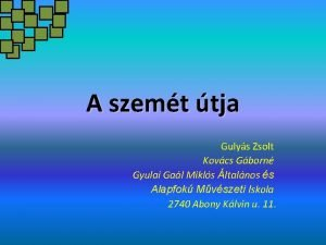 A szemt tja Gulys Zsolt Kovcs Gborn Gyulai