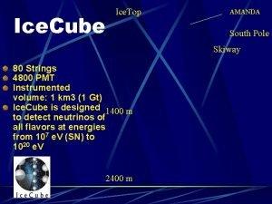 Ice Cube Ice Top AMANDA South Pole Skiway