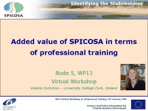 Identifying the Stakeholders Added value of SPICOSA in