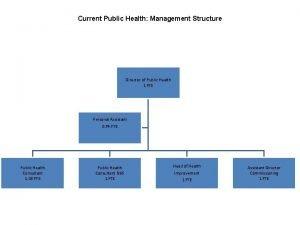 Current Public Health Management Structure Director of Public