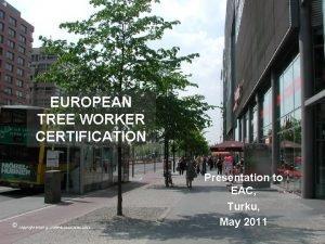 EUROPEAN TREE WORKER CERTIFICATION copyright brian g crane