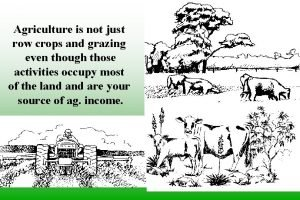 Agriculture is not just row crops and grazing