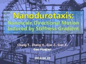 Nanodurotaxis Chang T Zhang H Guo Z Guo