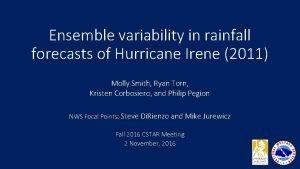 Ensemble variability in rainfall forecasts of Hurricane Irene