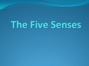 The Five Senses Sight Smell Hearing Touch Taste