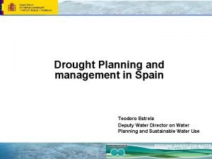 Drought Planning and management in Spain Teodoro Estrela