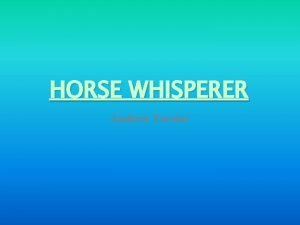 HORSE WHISPERER Andrew Forster What does a Horse