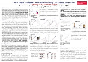 Maize Kernel Development and Composition During LateSeason Water