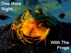 One More Night With The Frogs One More