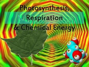 Photosynthesis Respiration Chemical Energy Quick review Chemical Changes