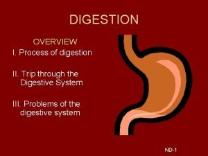 DIGESTION OVERVIEW I Process of digestion II Trip