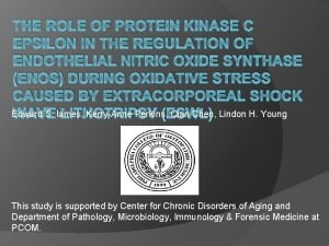 THE ROLE OF PROTEIN KINASE C EPSILON IN