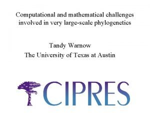 Computational and mathematical challenges involved in very largescale