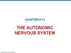 CHAPTER 14 THE AUTONOMIC NERVOUS SYSTEM Copyright 2010
