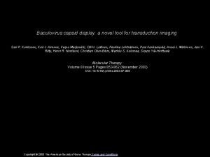 Baculovirus capsid display a novel tool for transduction