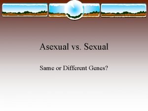 Asexual vs Sexual Same or Different Genes Asexual