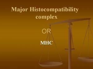 Major Histocompatibility complex OR MHC HLA genes MHC