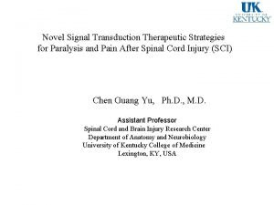 Novel Signal Transduction Therapeutic Strategies for Paralysis and