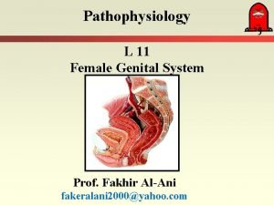 Pathophysiology L 11 Female Genital System Prof Fakhir