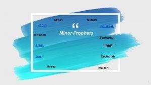 Micah Jonah Nahum Habakkuk Minor Prophets Obadiah Amos
