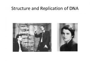 Structure and Replication of DNA Outline DNA as