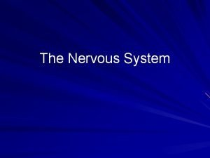 The Nervous System Two Main Parts The Central