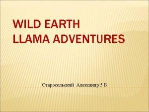 WILD EARTH LLAMA ADVENTURES 5 COME LLAMA TREKKING