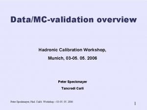 DataMCvalidation overview Hadronic Calibration Workshop Munich 03 05
