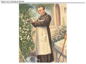 Figure 14 0 Painting of Mendel Figure 14